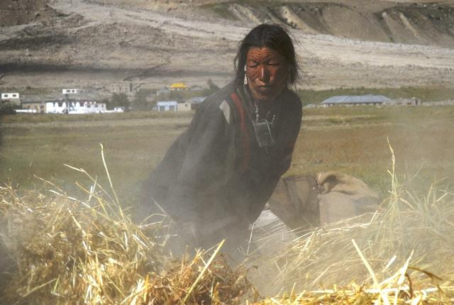 Ladakh_34.jpg