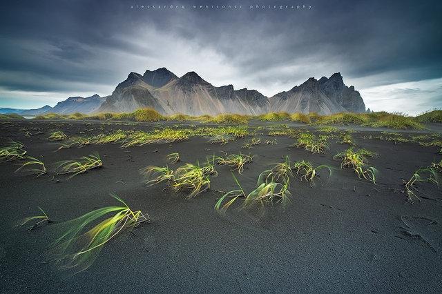 AMeniconzi_Iceland_0196305stk.jpg