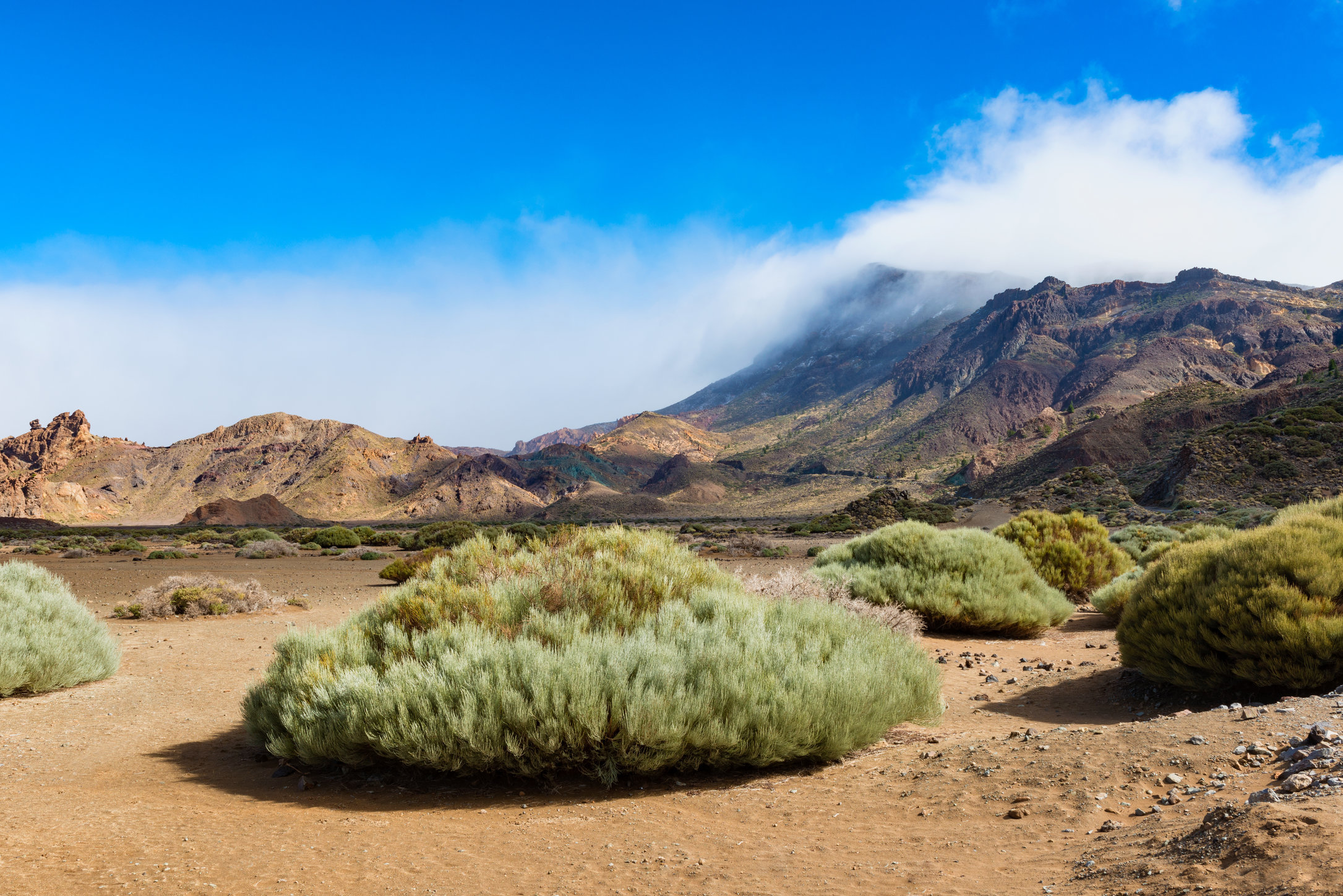 Plain in El Teide National Park Tenerife Hi Res.jpg