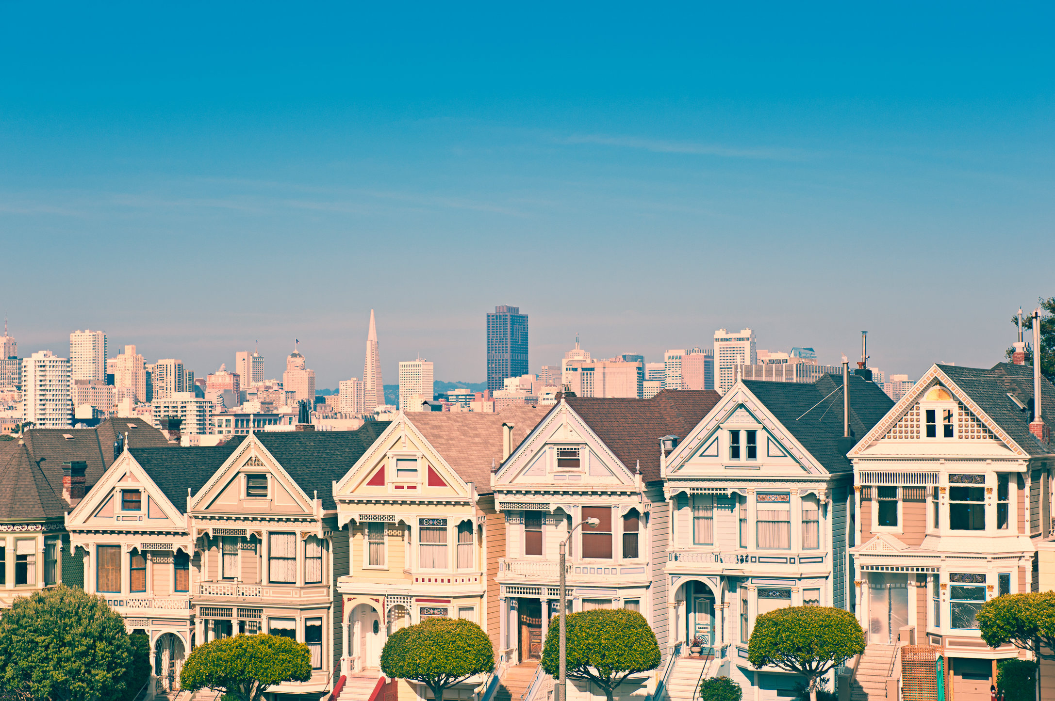 Its the Painted Ladies Hi Res.jpg
