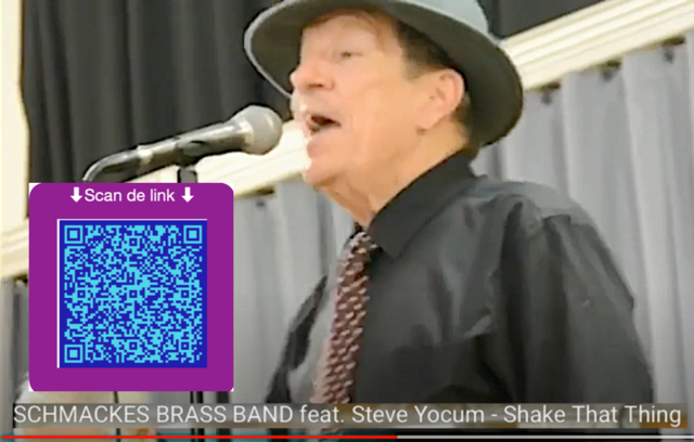 Steve Yocum - Shake That Thing (TI07R06link).png