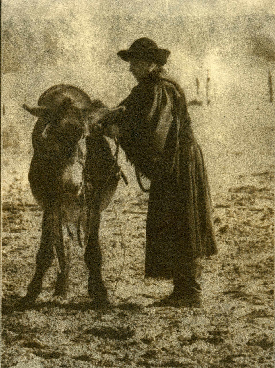 Hungarian-Sancho-Panza.jpg