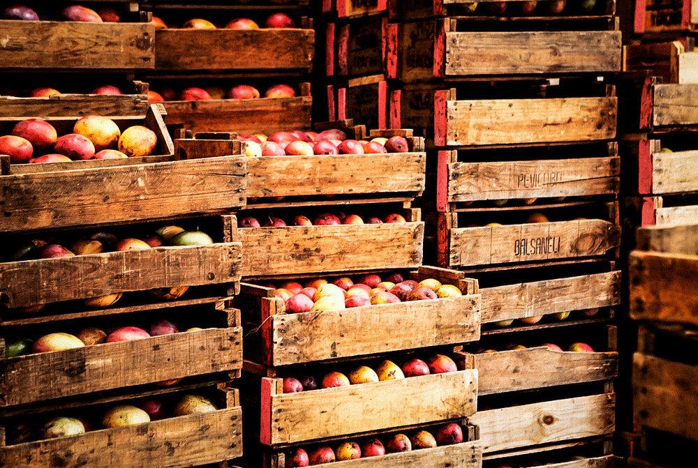 019_MercadoMunicipal_1.jpg