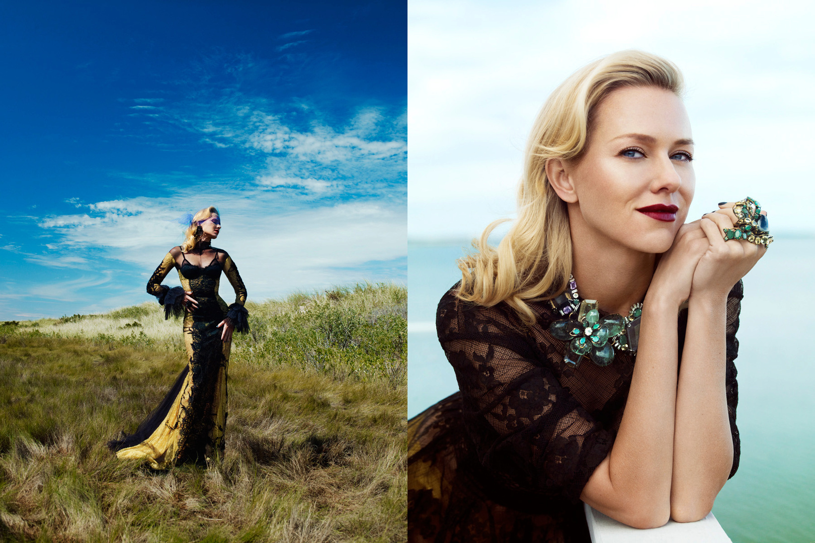Harper's Bazaar Australia. Naomi Watts. January/ February 2012 Cover