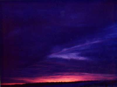 Violet Sunrise 4 by Alison Gracie