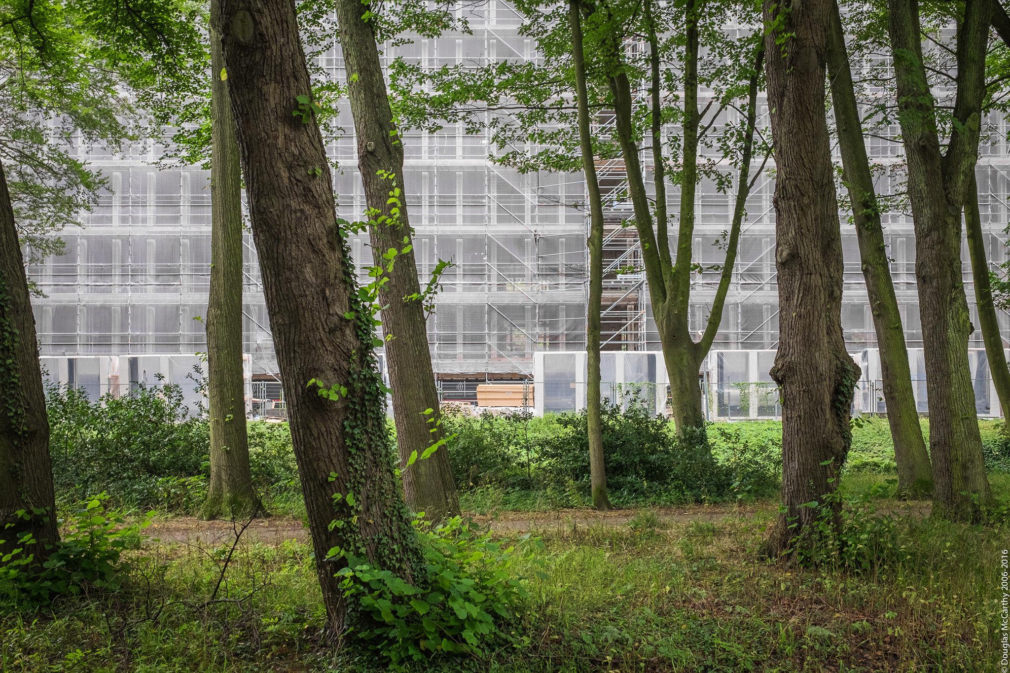 Goetlijfpad, Den Haag