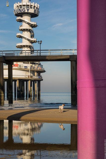 At the Pier (Scheveningen)