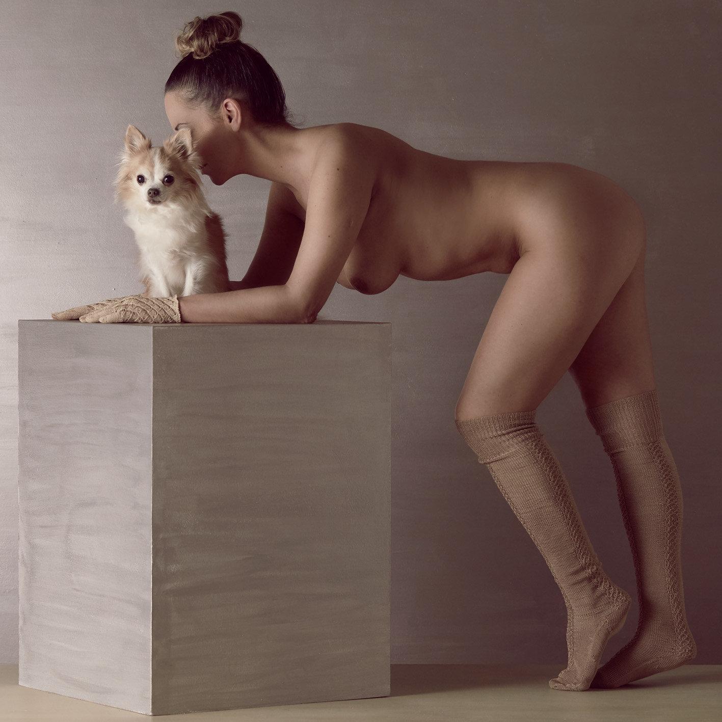 dogs_09.jpg