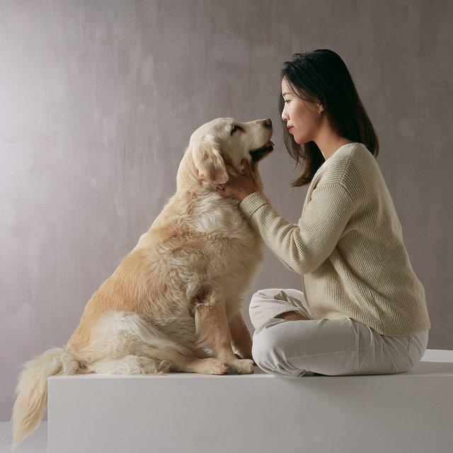 dogs_05.jpg