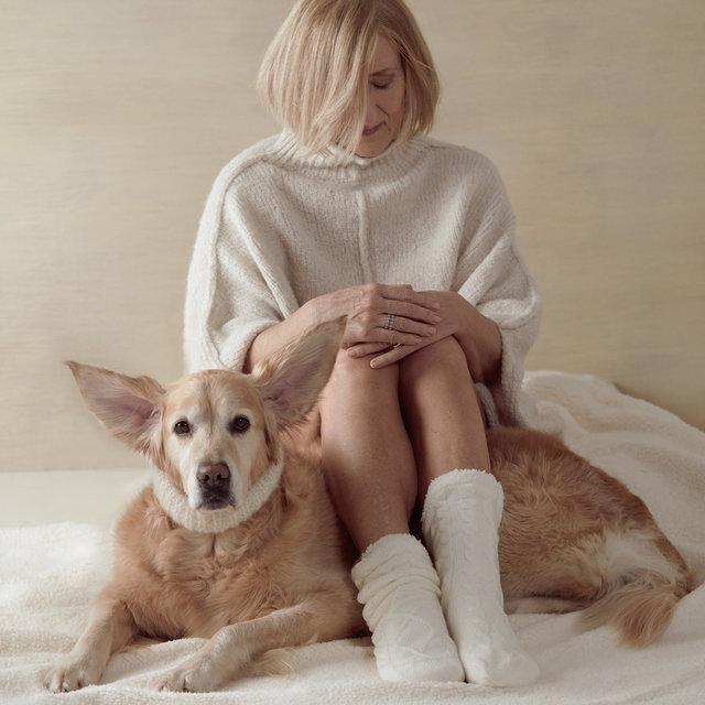 dogs_01.jpg