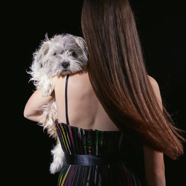dogs_02.jpg