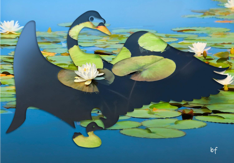 swan-02_1.jpg
