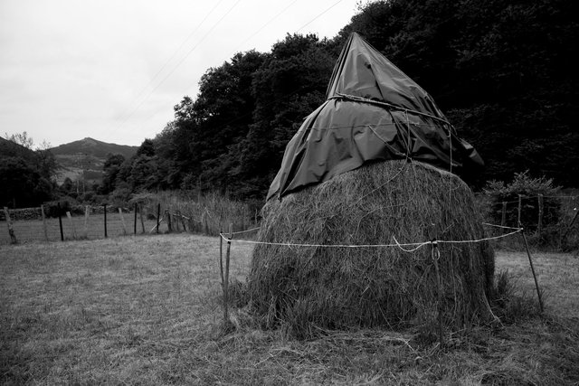 haystack b+w.jpg