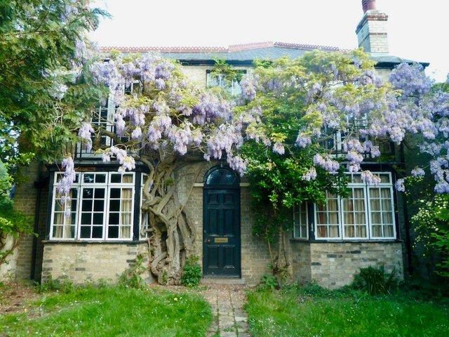 Grantchester Meadows, Cambridge 2016