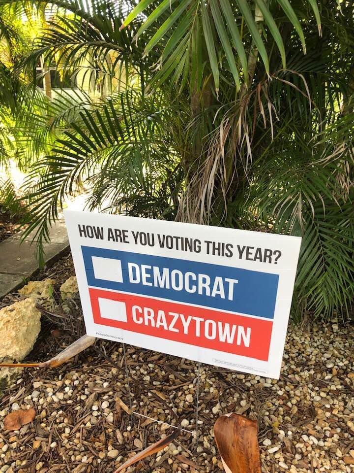 Mary Larson Crazytown.jpg
