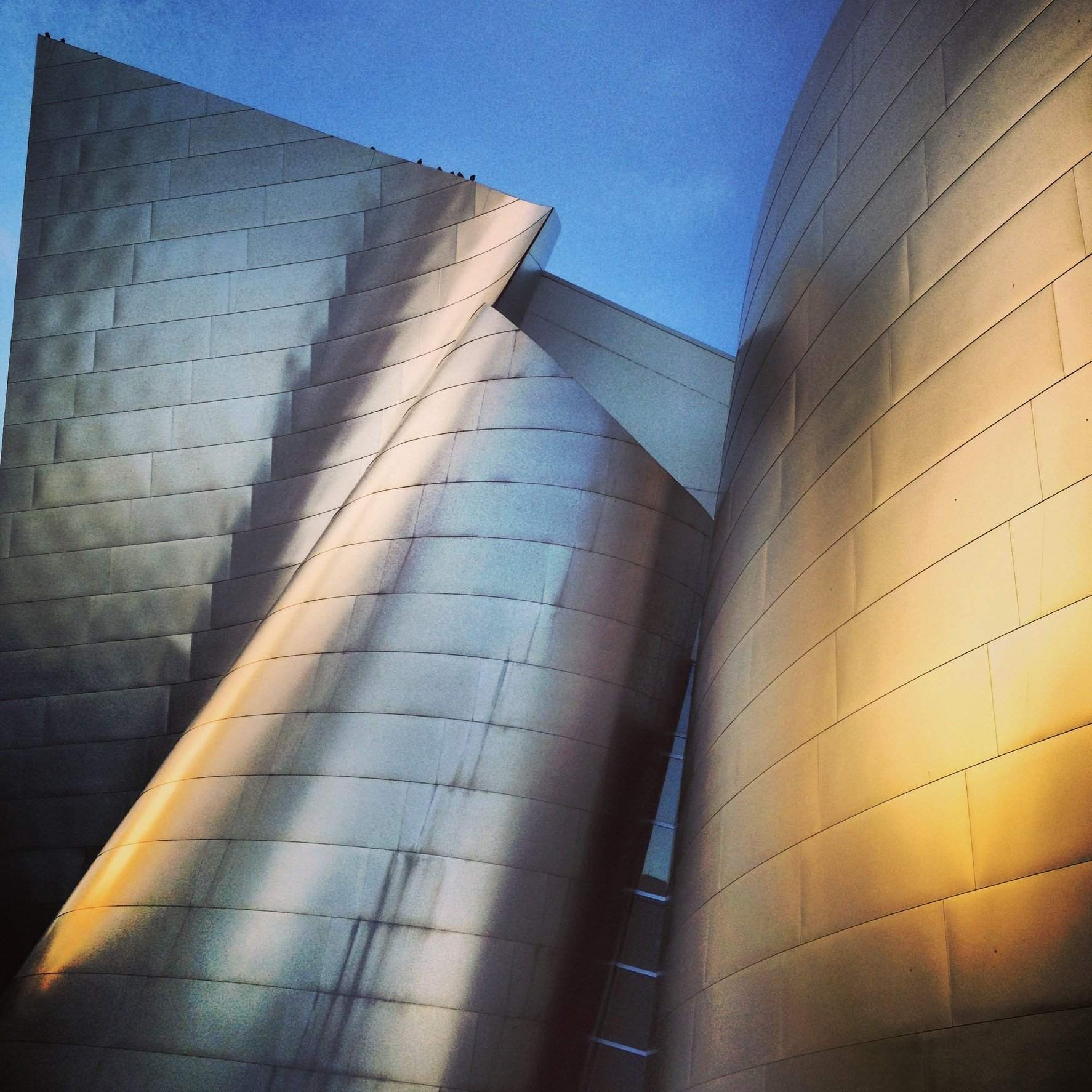 WALT DISNEY CONCERT HALL - GOLD 16