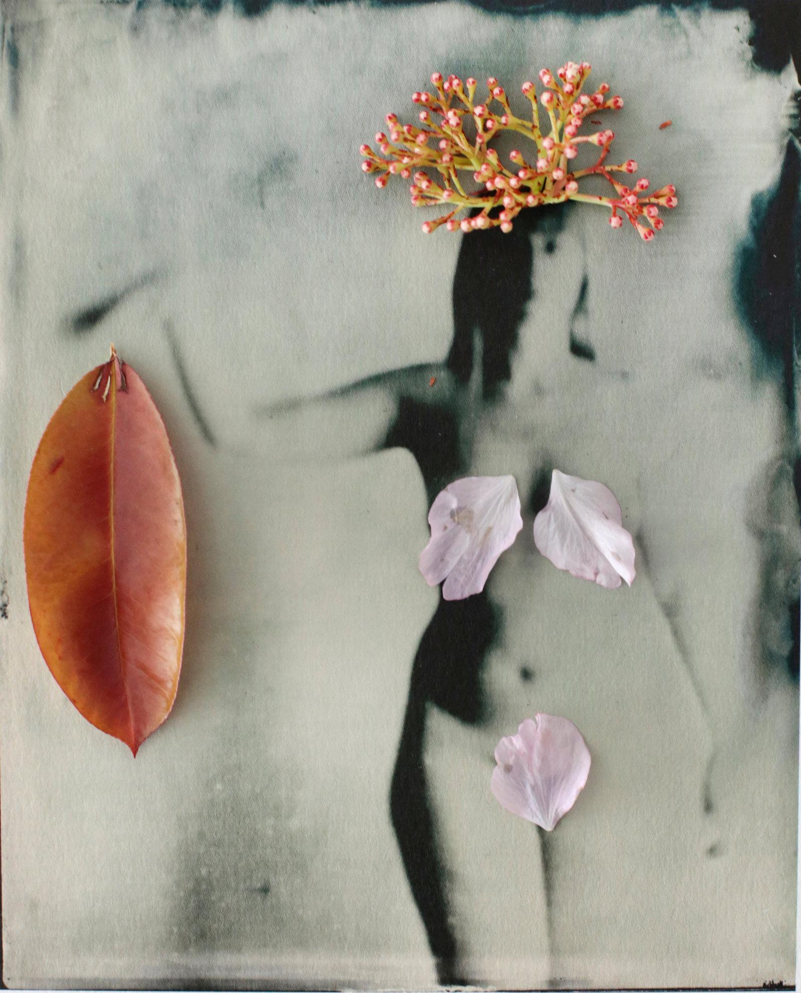 FLOWERS_1_025.JPG