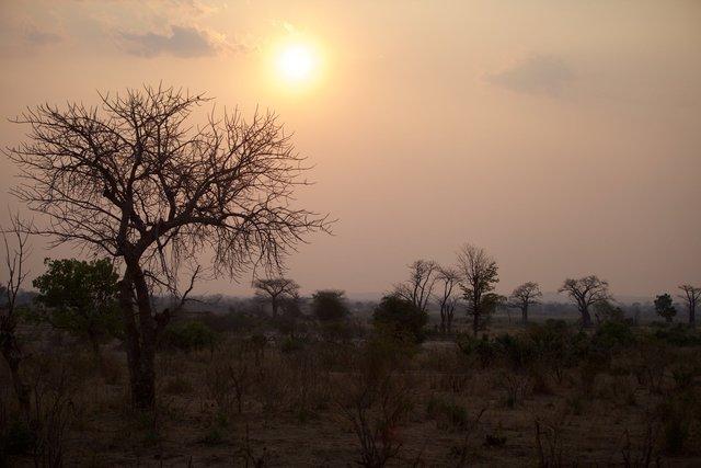 Malawi_036.jpg