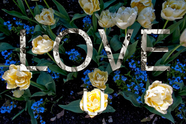 Love-43.jpg