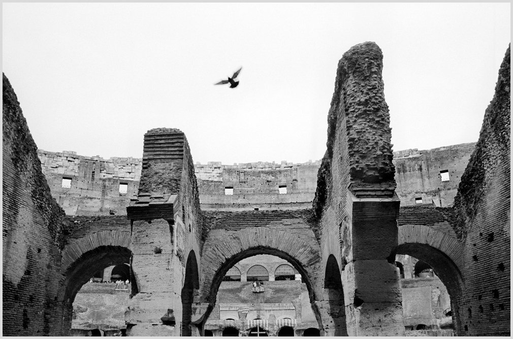 Roma0191.jpg