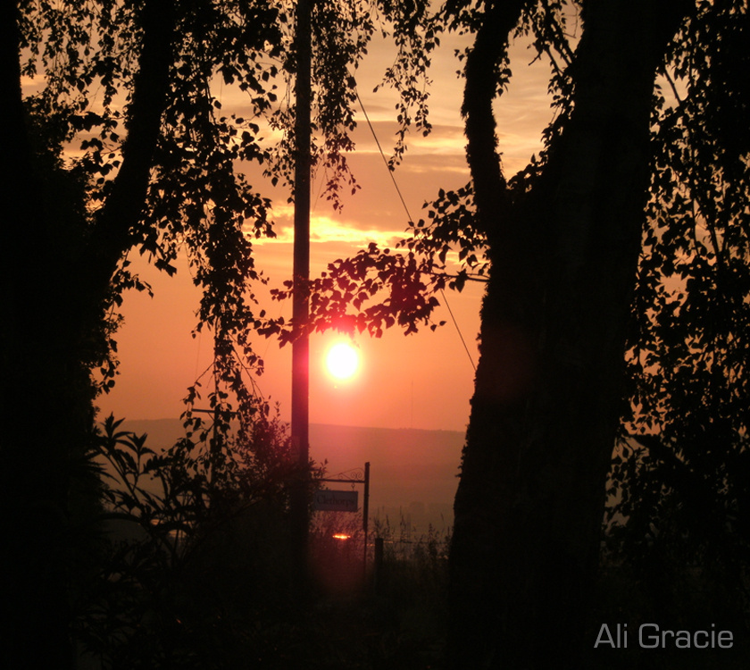 September Sunrise by Alison Gracie