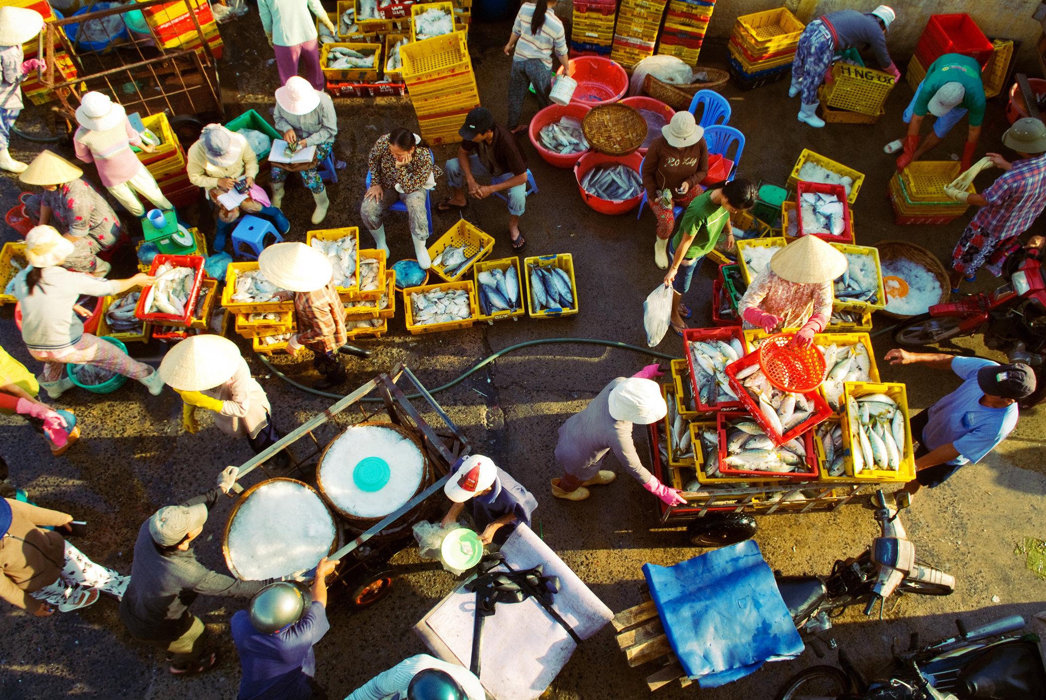 Nha Trang Fish Market II