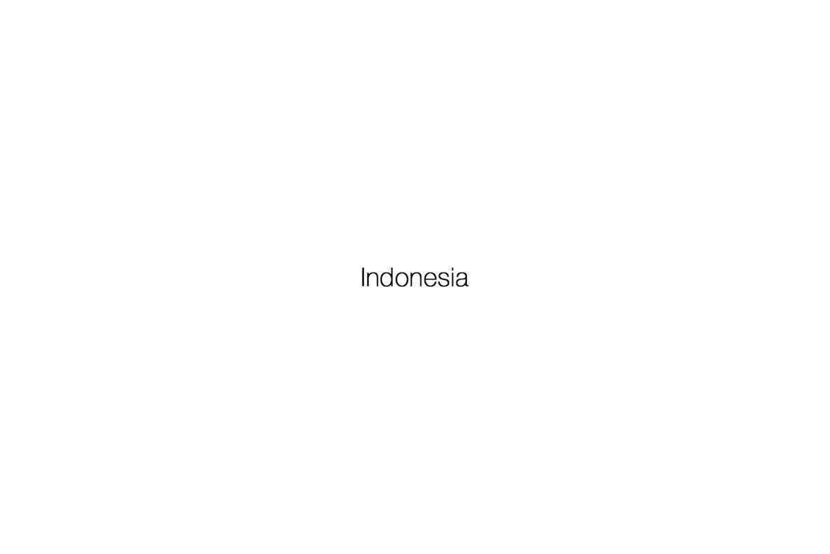 Indo.jpg