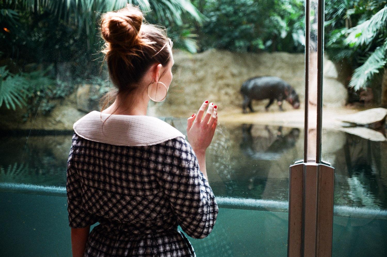 Zoo_Celine_7.jpg