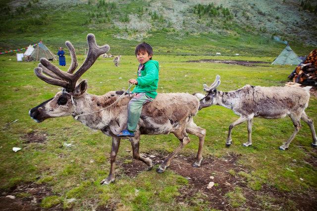 IMG_3474_mongolia.jpg