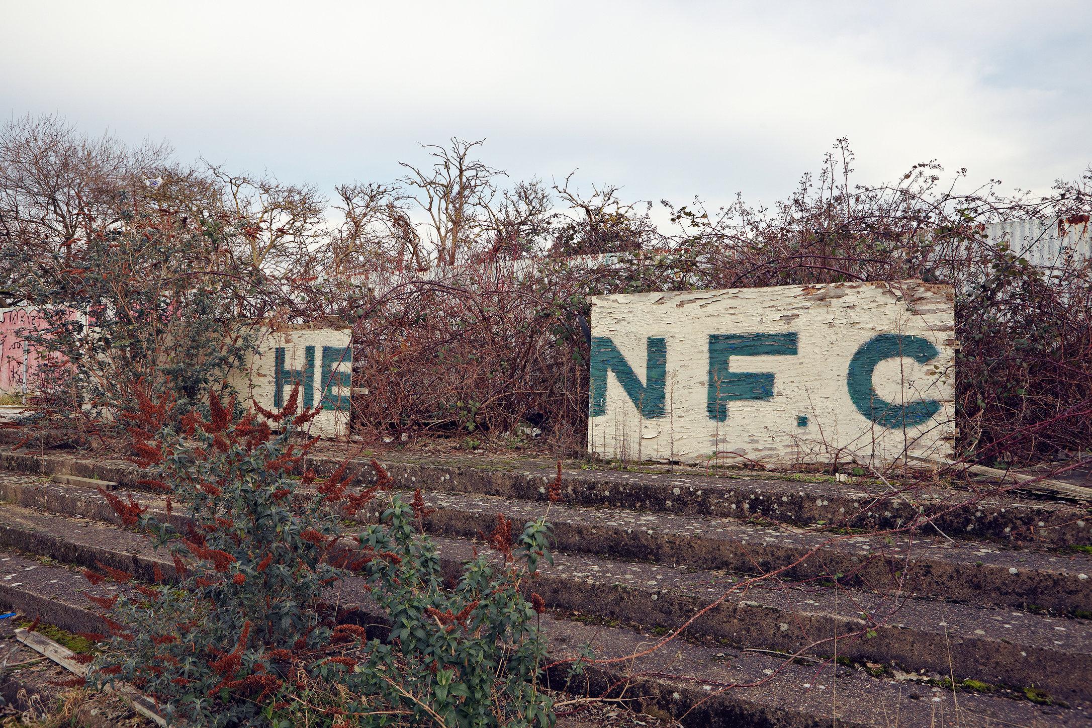 T_Ball_Hendon_FC_2012_MG_4833.jpg