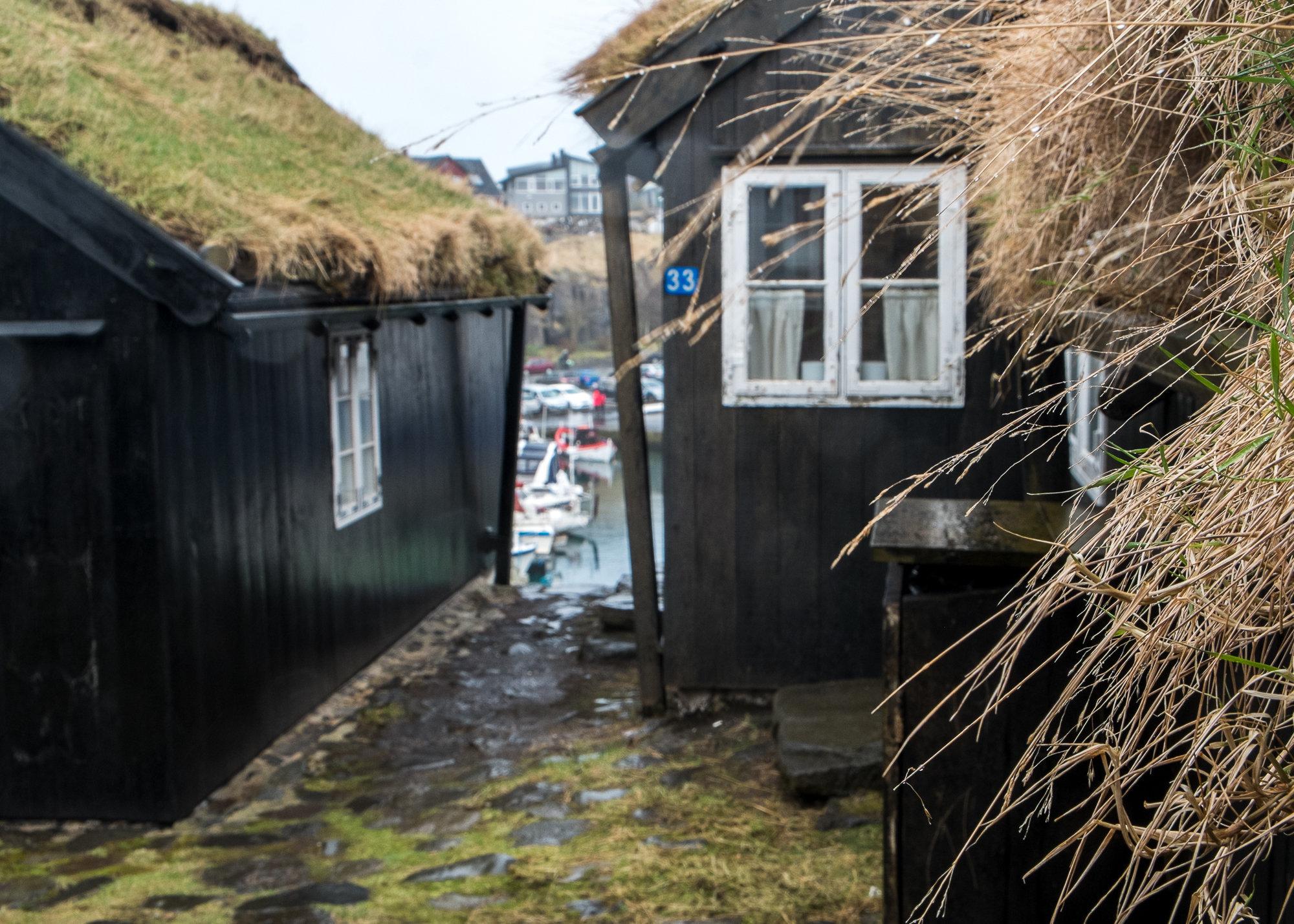 Faroe_Islands-9857.JPG