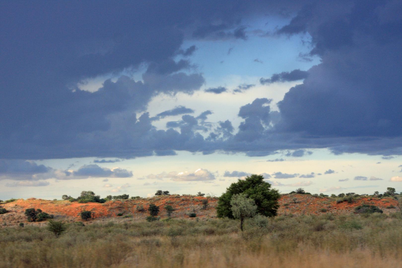 Kgalagadi Transfrontier National Park (SA)