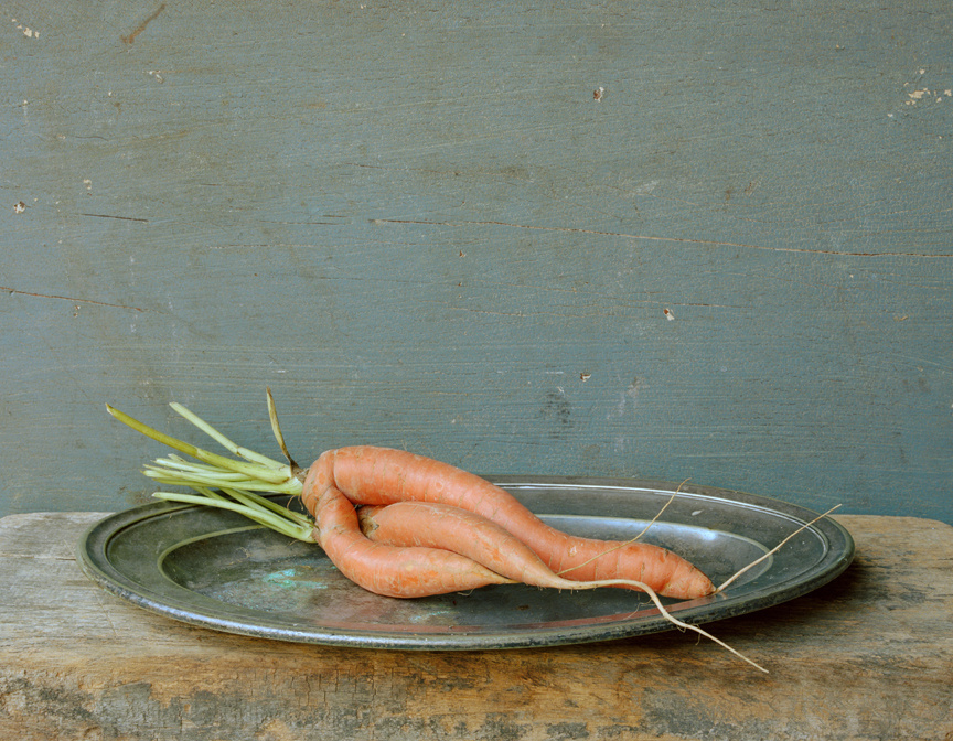 Carrots, Entwined, c 2007