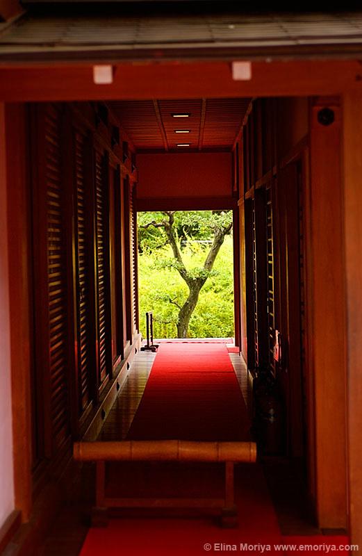 emoriya_jp_temples_02101630.jpg