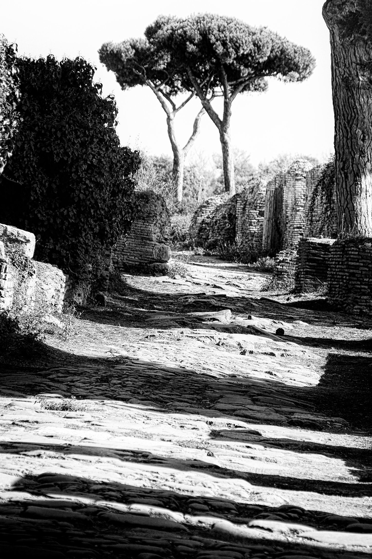 Roman heritage 2 (1).jpg