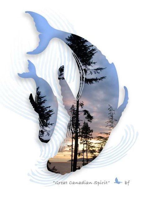 Whale-09.jpg