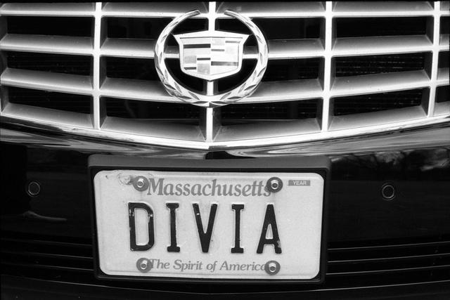 divia.jpg