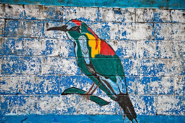murales.nicaragua_sollazzo-19.jpg