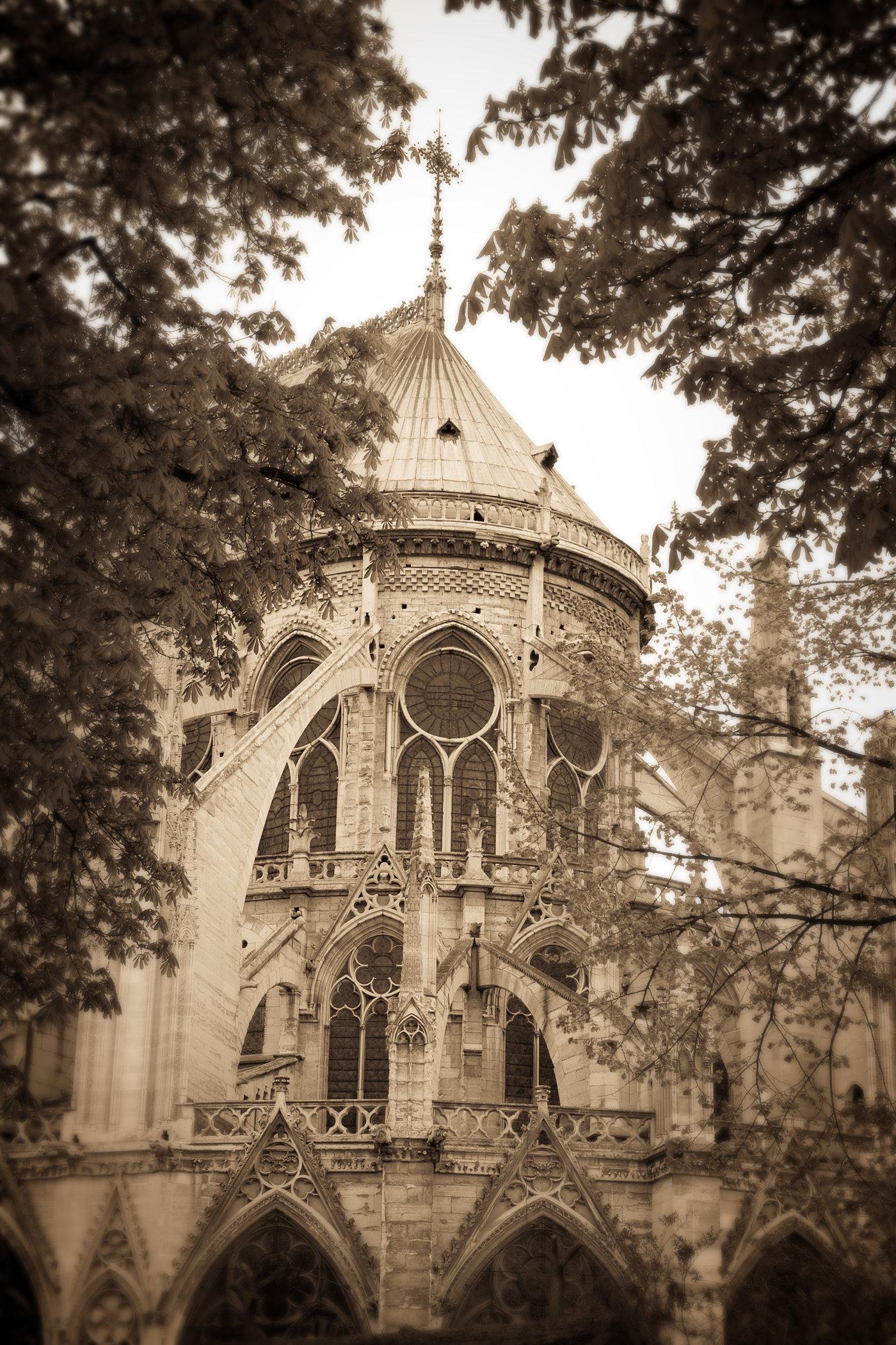 Notre-Dame de Paris II