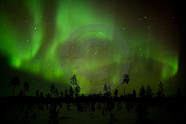 Polarlichter-3.jpg