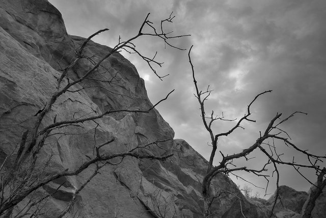 colorado-springs-landscape-black-and-white032.jpg
