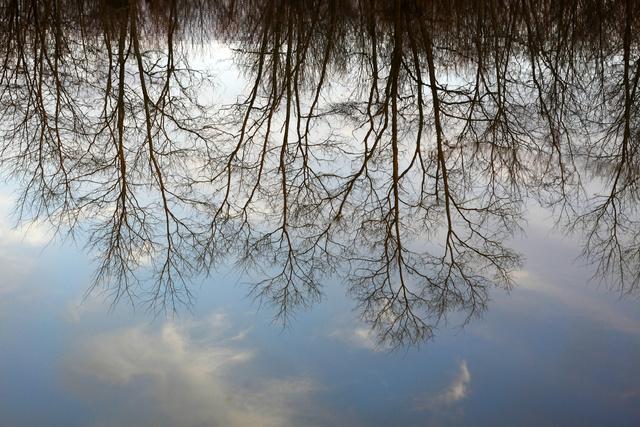 Reflection, Ohio