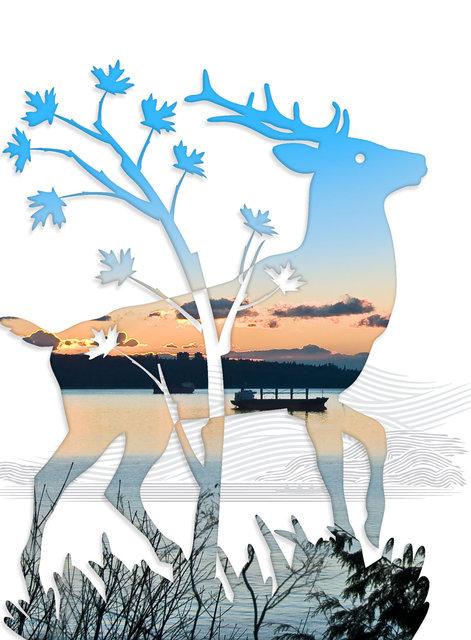 Elk-11.jpg