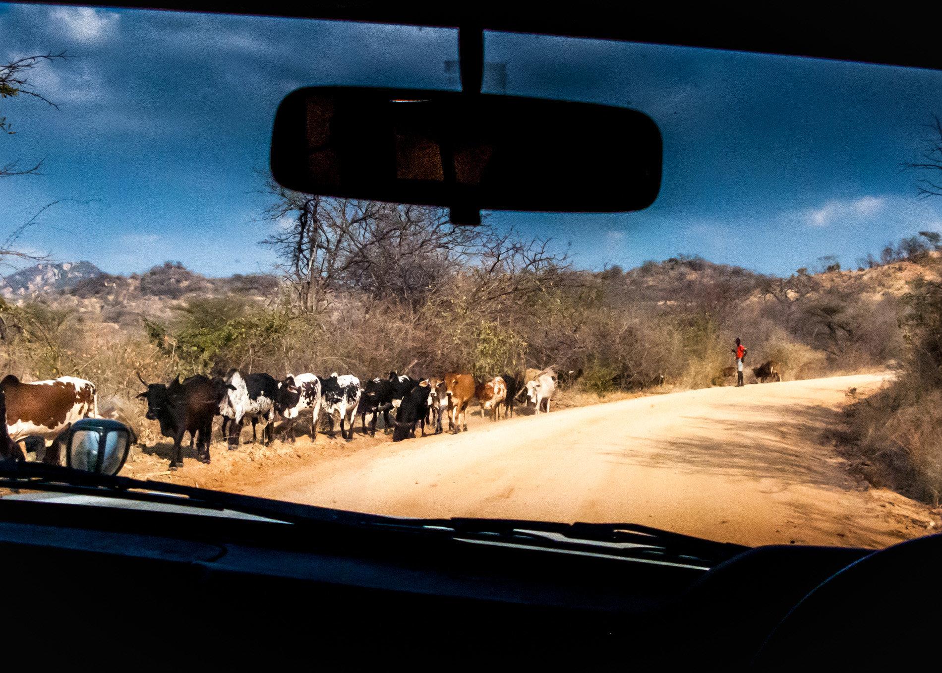 Tanzania,_Back_Seat_View-1707.jpg