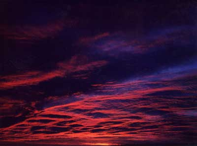 Violet Sunrise 6 by Alison Gracie