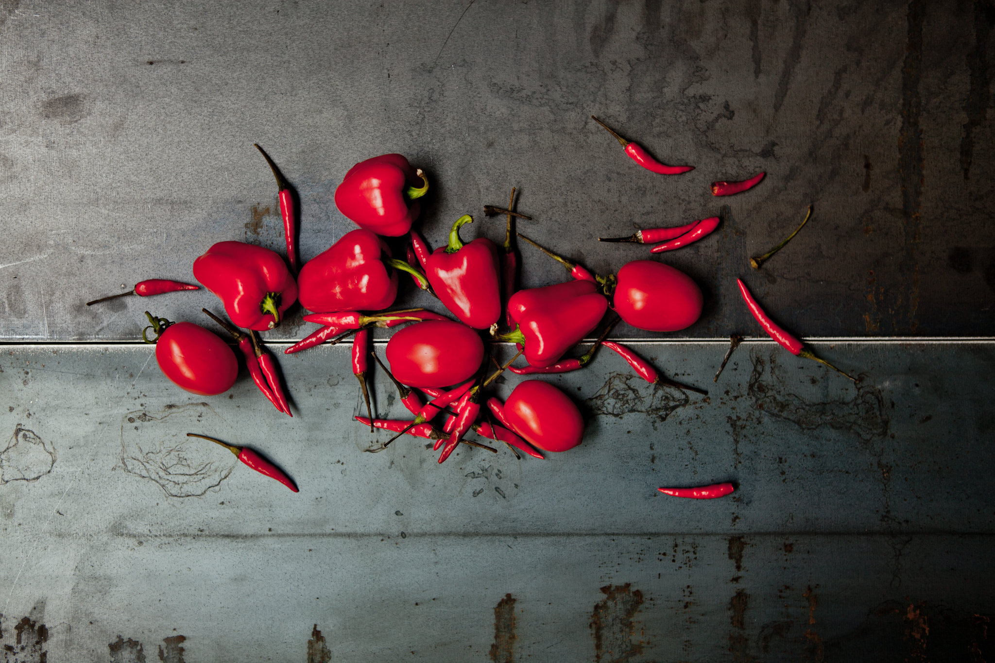 productshoot_01.jpg