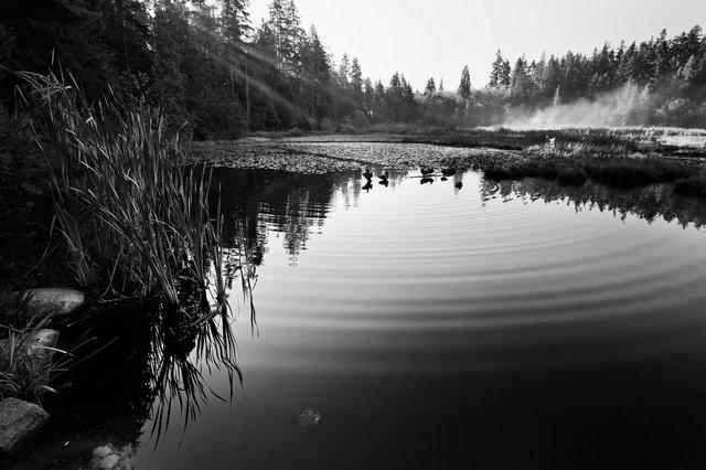 Beaver lake02.jpg