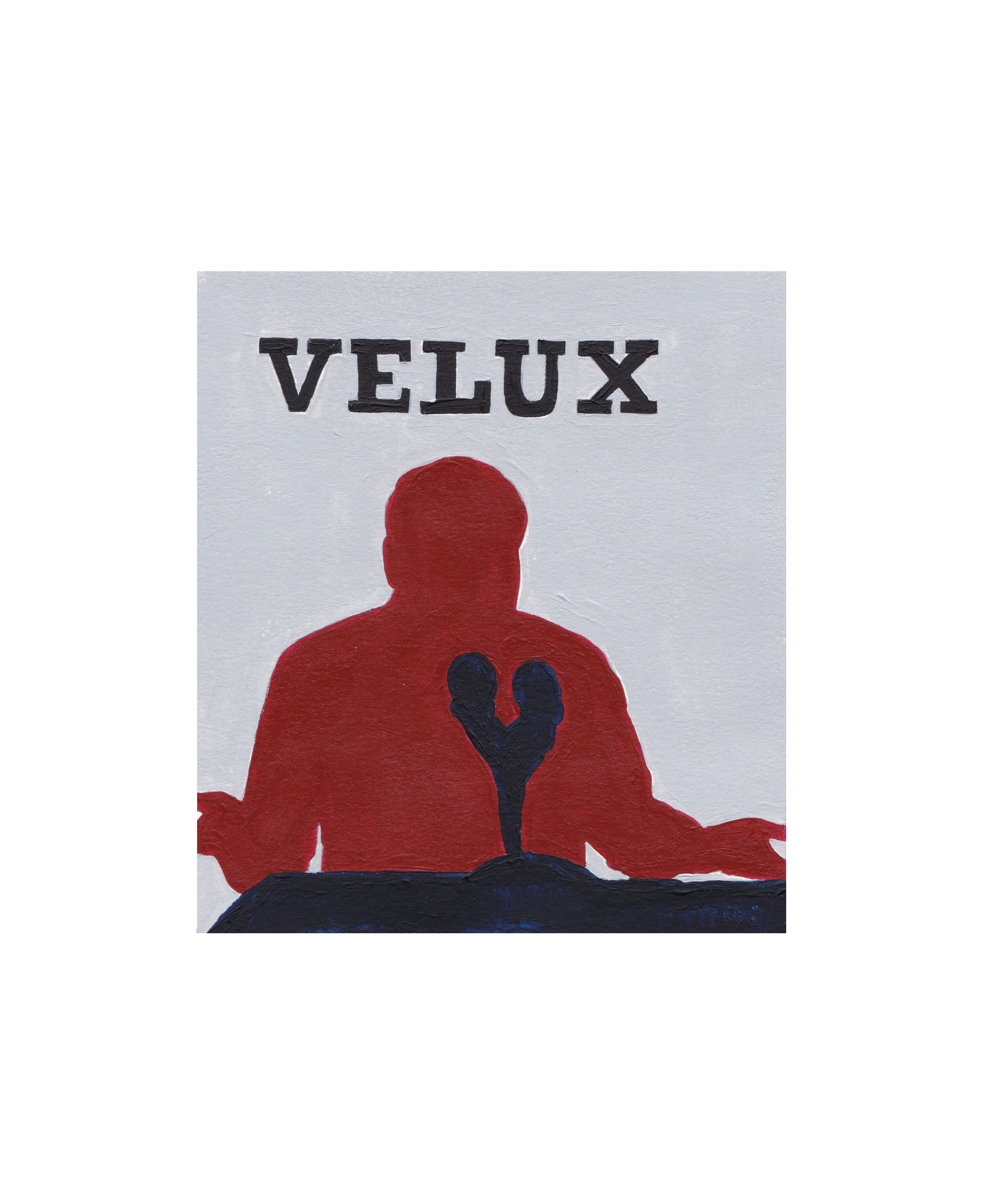 100618_Hall_Velux.png