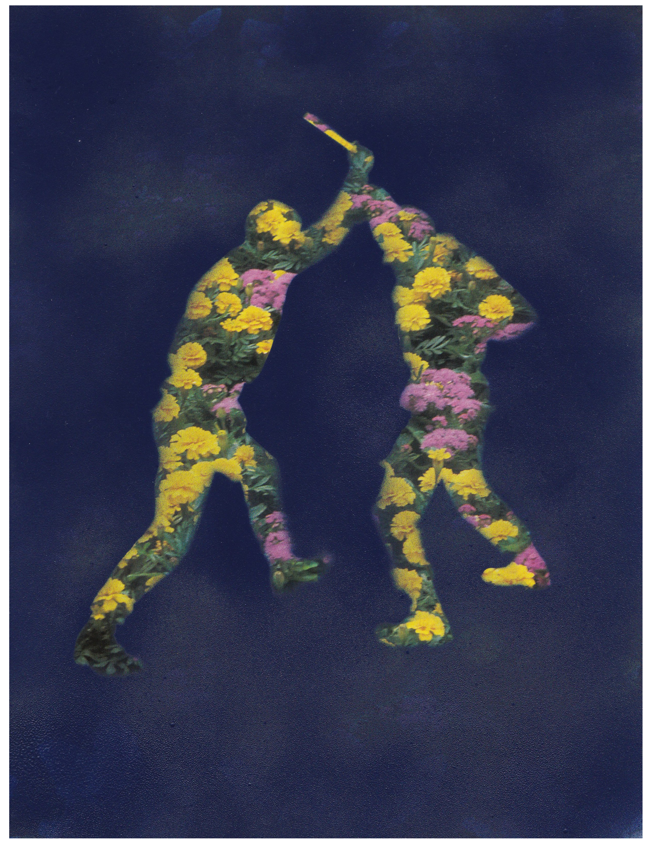 100618_Hall_Collage_Flower Fight.png
