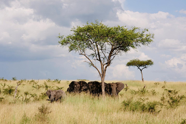 2016_BM_BA_Tanzania-1859.jpg